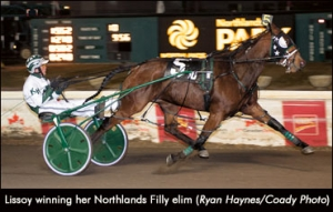 Lissoy winning her Northlands Filly Elimination