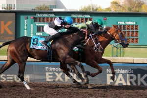 Shimshine edges Regal Max in the Alberta Premier on Alberta Breeders' Fall Classic day