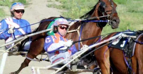 HRA 2015 Standardbred Open CTV Telecast - Video