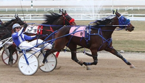 Fire Watch wins the Alberta Super Final