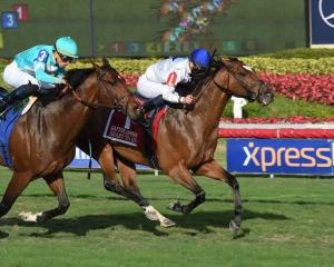 Heart to Heart Finally Clinches G1 at Gulfstream Park Turf on February 10, 2018