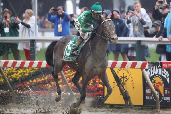 Exaggerator, ridden by Kent Desormeaux, wins the Preakness Stakes by 3 1/2 lengths Saturday.
