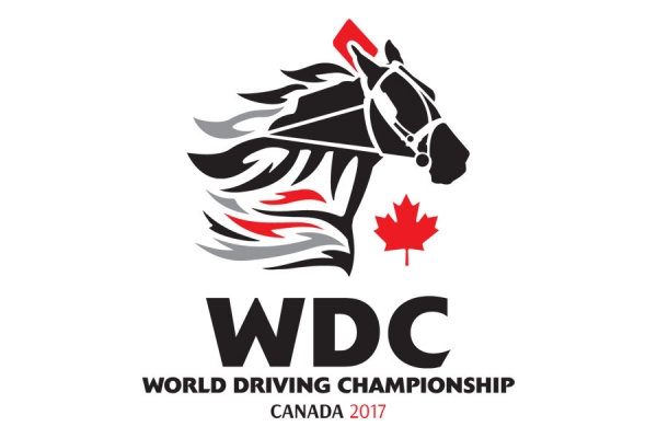 Draw Complete for First Leg of 2017 World Driving Championship