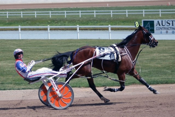 Brand new Camaro - or career in harness racing