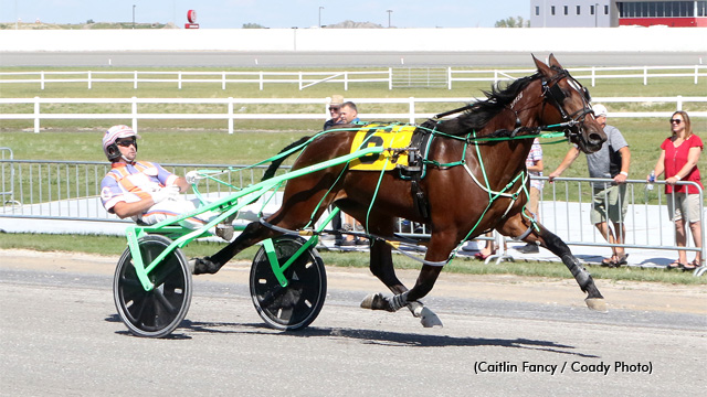Lady Neigh Neigh taking the win at Century Downs (Caitlin Fancy/Coady Photo)