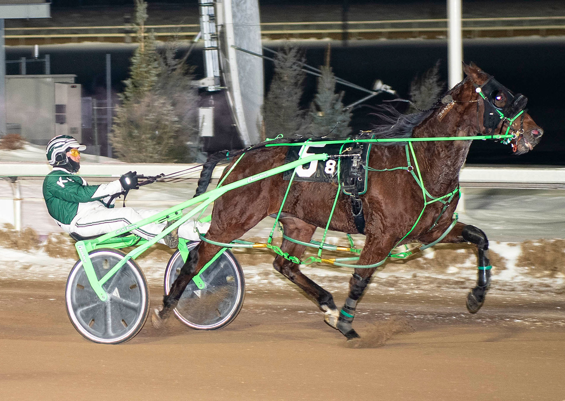 West Coast Beach, driven by Kelly Hoerdt, set a blazing 1:54 time in the second Western Canada Pacing Derby Elimination race
