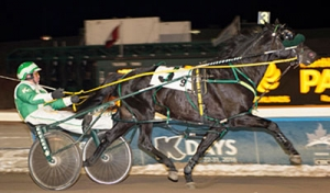 First Class Horse at the finish line in the Western Canada Pacing Derby