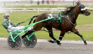 KNEEDEEP N CUSTARD (Hoerdt) will be in race 10 at Fraser Downs