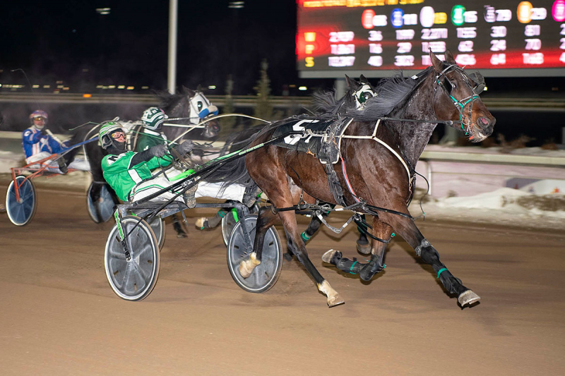 Make Some Waves, driven by Dave Kelly, paid almost 80-1 in the first Western Canada Pacing Derby Elimination race at Century Mile