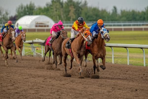 Expode (outside) and Journeyman in the stretch at Century Mile in the 90th Canadian Derby