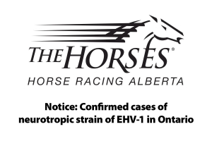 Notice: Confirmed cases of neurotropic strain of EHV-1 in Ontario