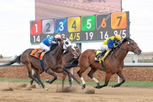 CEO Verlik sees positives in Alberta racing rejuvenation