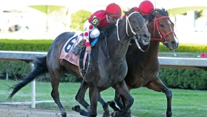 MIDNIGHT BISOU - The Apple Blossom G1 - 55th Running - 04-14-19