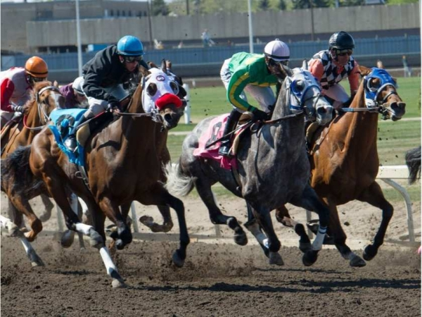 The start of the 60th annual Journal Handicap horse race at Northlands race track in Edmonton on May 18, 2015