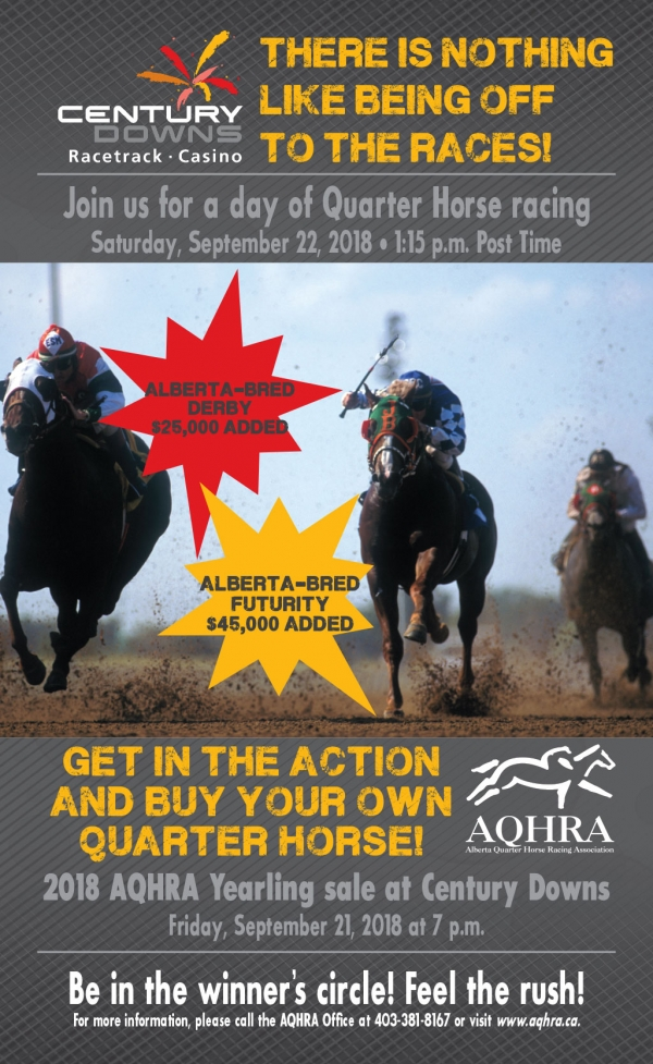 Quarter Horse Feature Day at Century Downs