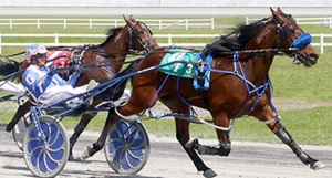 Crackle N Burn winning at Century Downs