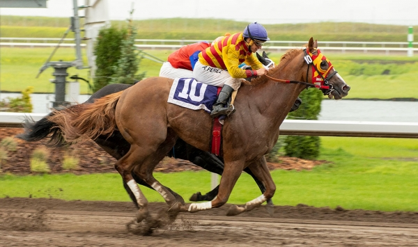 Vancouver invader Explode winning an allowance race at Century Mile this weekend