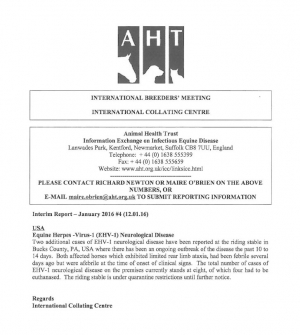 AHT Interim Report - January 2016
