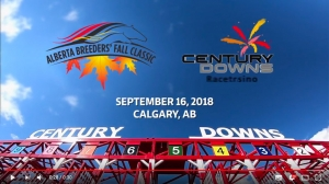 Alberta Breeders' Fall Classic at Century Downs (video)