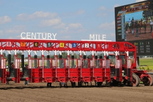 Handle record for opening night at Century Mile