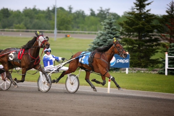 Pictured winning her elimination of the Elegantimage Stakes at Mohawk Racetrack with Driver Rick Zeron in 2013